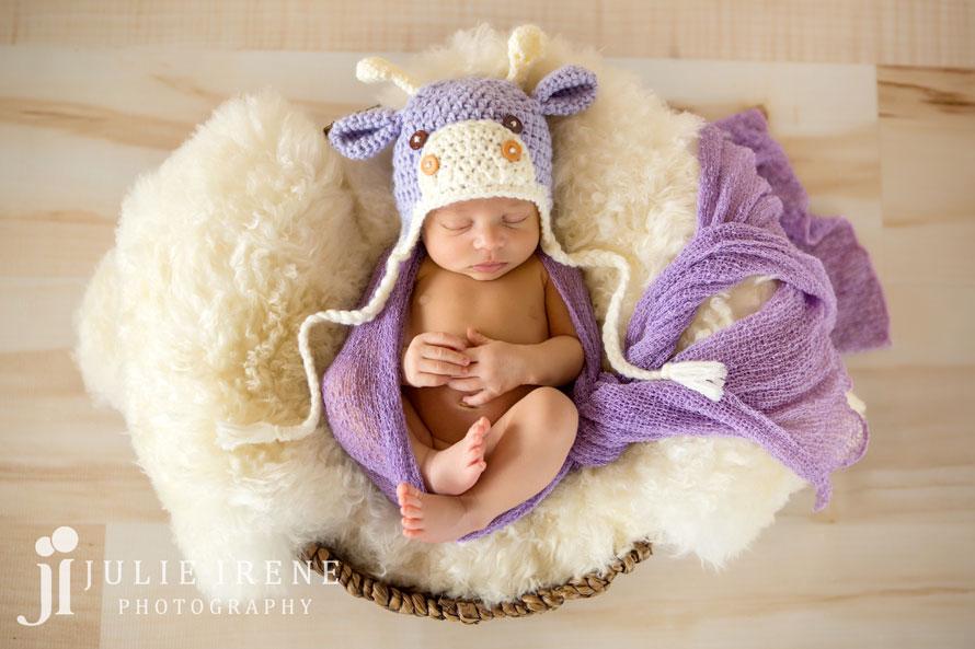 purple giraffe newborn baby